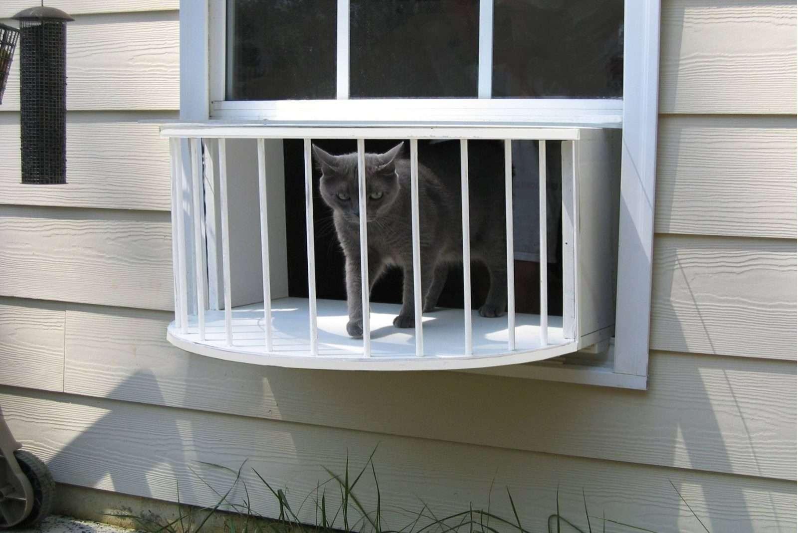 Cheap cat door for window