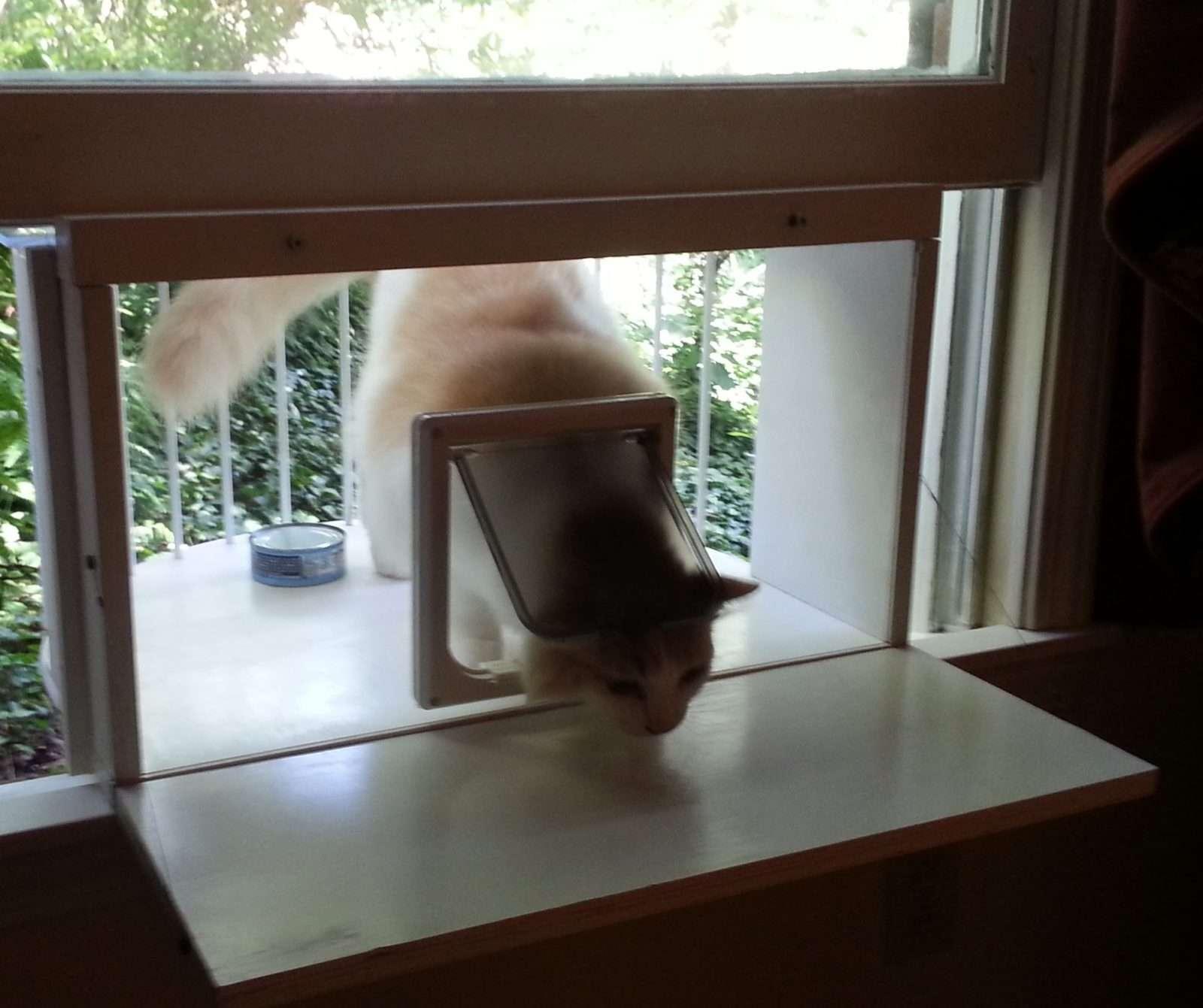 Cat Veranda Window Box