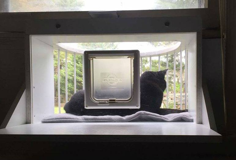 The Cat Solarium Weather Package Save 45 97